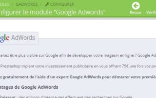 adwords-prestashop.jpg