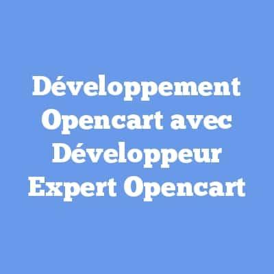 Développement Opencart avec Développeur Expert Opencart