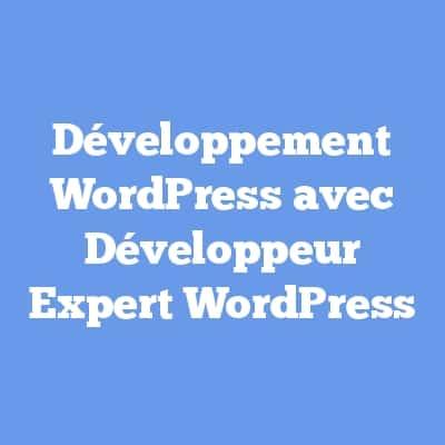 Développement WordPress avec Développeur Expert WordPress